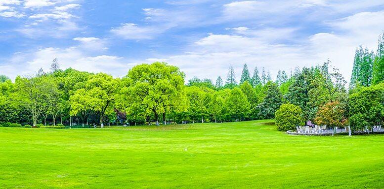 maisons parc jardin Toulouse