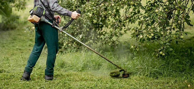 debroussaillage jardin oise
